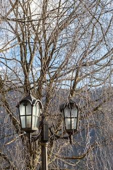 Poste de lámpara vintage al aire libre con ramas en el fondo