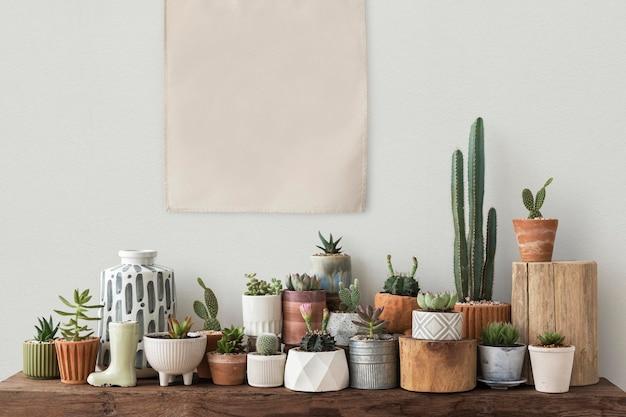 Póster de lienzo en blanco colgado sobre un estante lleno de cactus y suculentas