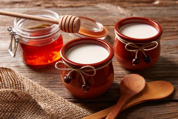 Postre lácteo cuajada con miel.
