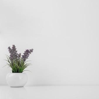 Pote con hermosas flores