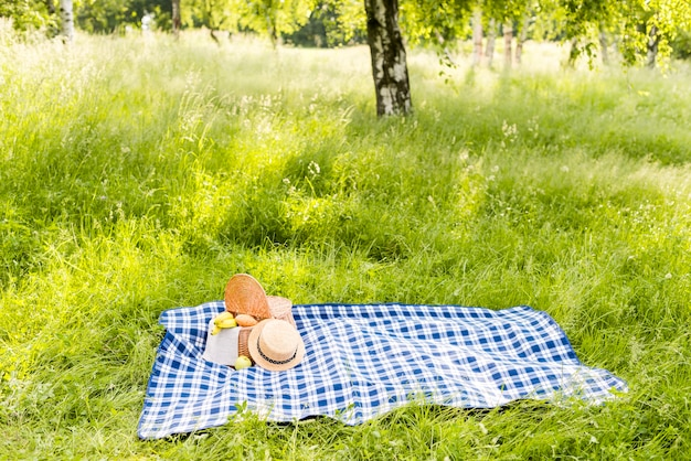 Pradera soleada con plaid a cuadros repartidos en el césped para picnic