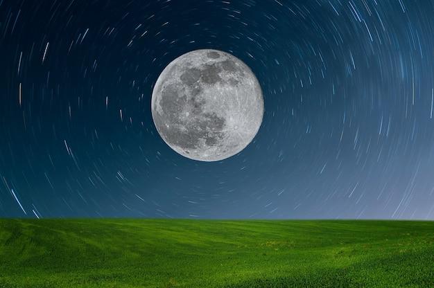 Prado por la noche a la luz de la luna llena. paisaje con campo verde y estrella.