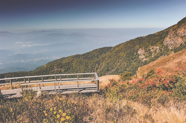 Prado seco de montaña, paisaje de nubes de niebla y puente de madera.
