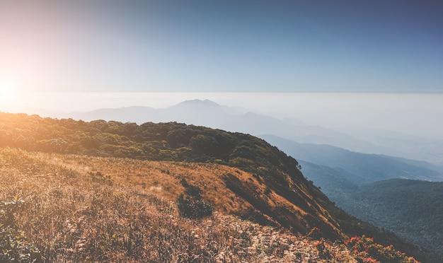 Prado seco de montaña y vista de paisaje de nube de niebla.