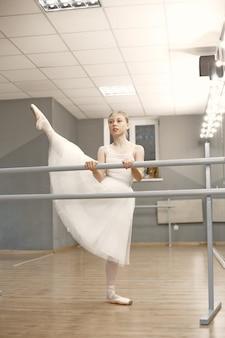 Preciosa bailarina de ballet. bailarina en pointe.