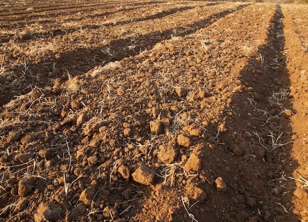 Preparación del suelo agrícola para cultivo.