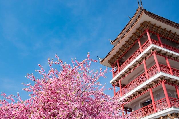 Primavera rosa flor de sakura decorando un jardín con edificio de estilo chino