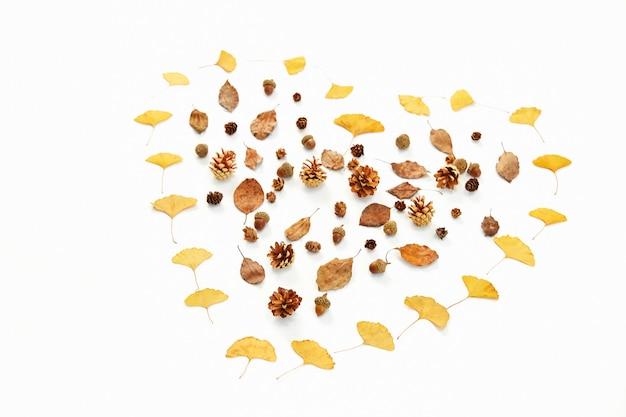Primer disparo de hojas de otoño coloreadas en forma de corazón aislado sobre fondo blanco.