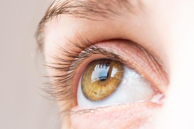 Primer extremo del ojo humano marrón en técnica de poca luz.