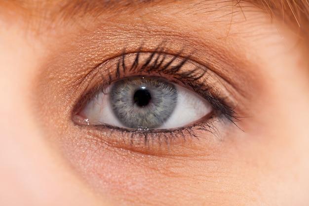 Primer del ojo azul de la mujer joven con maquillaje del día
