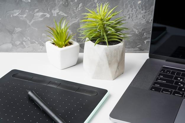 Primer plano de aparatos y plantas de decoración.