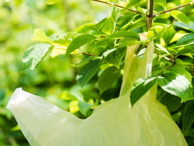 Primer plano de la bolsa de plástico amarilla que cuelga en la rama de un árbol