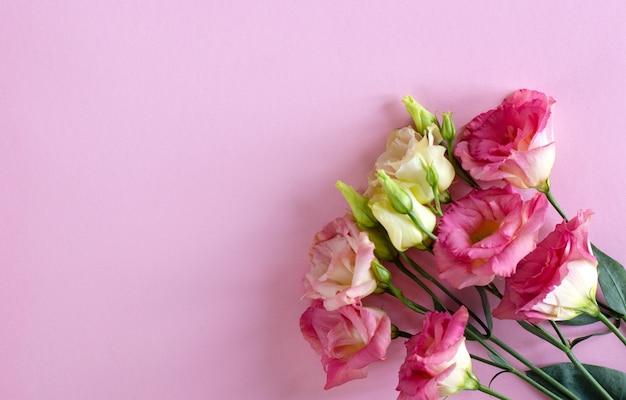 Primer plano de bouqet hermosas flores de eustoma rosa y blanco