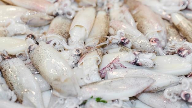 Primer plano de calamar fresco en venta
