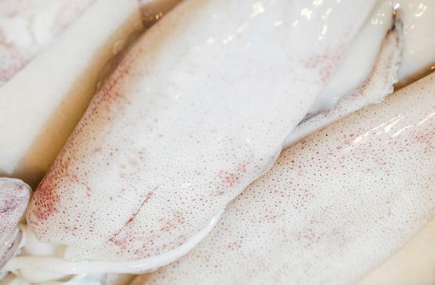 Primer plano de calamar fresco