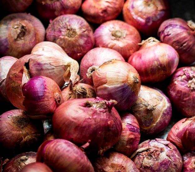 Primer plano de cebollas rojas cocinando ingredientes