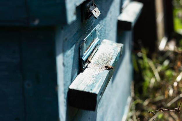 Primer plano de colmenas de abejas de madera en la granja