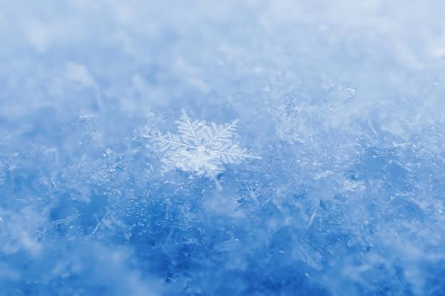 Primer plano de los copos de nieve. fotografía macro. el concepto de invierno, frío. copie el espacio.