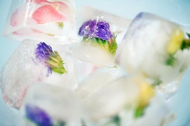 Primer plano de cubo de hielo de flores