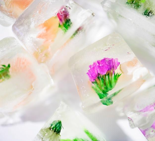 Primer plano de un cubo de hielo de flores