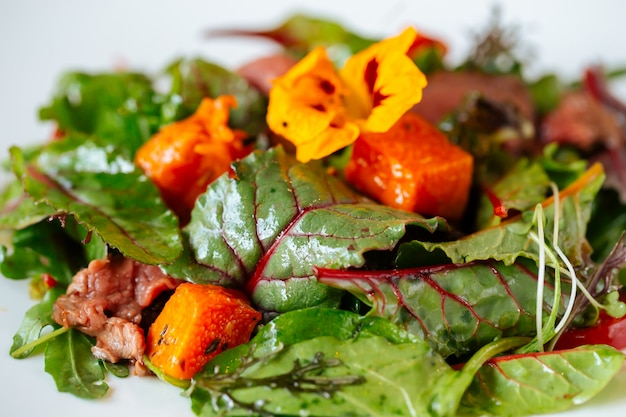 Primer plano de ensalada gourmet de salmón y carne de res