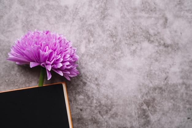 Primer plano de una flor artificial falsa en el libro cerrado sobre fondo de textura grunge