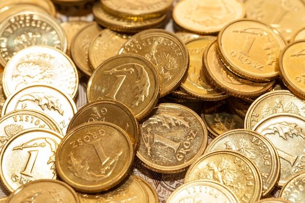 Primer plano fotografiado dinero polaco - zloty, billetes y monedas