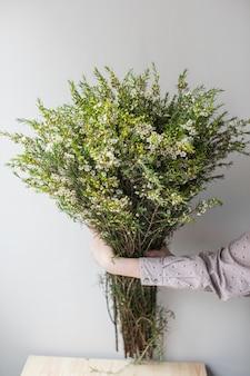 Primer plano grande hermoso ramo de flor de cera blanca. fondo de flores y papel tapiz. concepto de tienda floral. hermoso ramo recién cortado. entrega de flores.