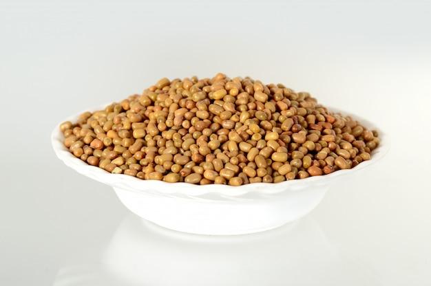 Primer plano de habas de polilla, nombre indio matki, primer plano de habas de polilla una leguminosa menos conocida