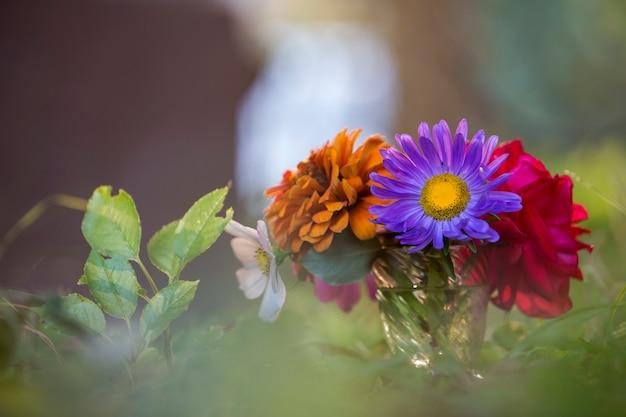 Primer plano de hermosas flores de campo multicolor brillante otoño