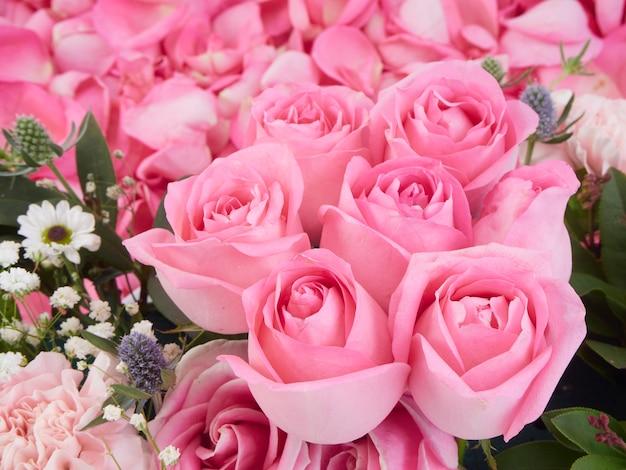 Primer plano de hermosas flores rosas rosadas