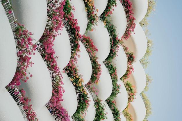 Primer plano de hermoso arreglo floral con formas geométricas