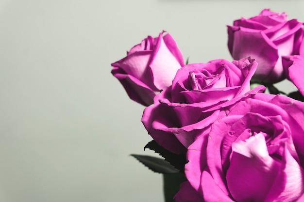 Primer plano de un hermoso arreglo floral con rosas sobre un fondo blanco con espacio de copia