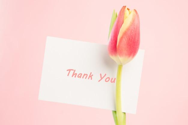 Primer plano de un hermoso tulipán con una tarjeta de agradecimiento