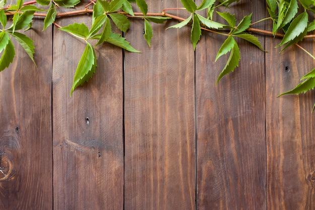 Primer plano de hiedra de uva verde en el fondo de una superficie de madera
