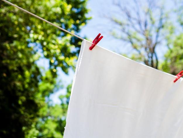 Primer plano de hoja blanca de secado en la línea