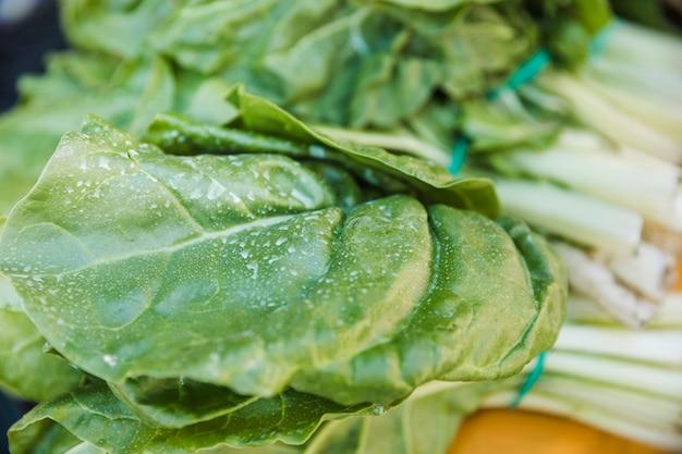 Primer plano de hojas de acelgas frescas verdes para la venta