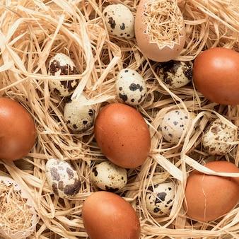 Primer plano de huevos de pascua marrón estacional