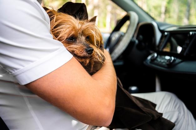 Primer plano de lindo perro con hombre