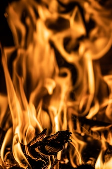 Primer plano de llamas de fuego con leña ardiente
