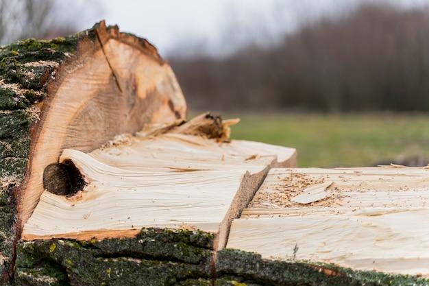 Primer plano de madera para hoguera