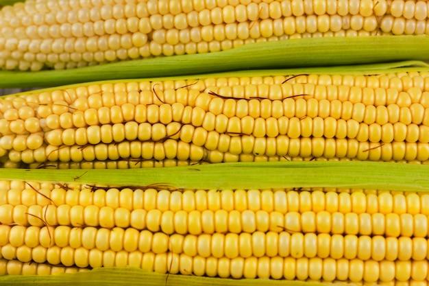 Primer plano de maíz amarillo fresco