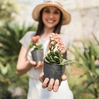 Primer plano de una mano femenina que sostiene la flor rosada planta en maceta