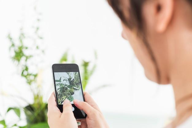 Primer plano de una mano femenina que toma la fotografía de plantas en maceta en el teléfono celular