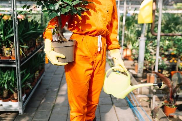 Primer plano de la mano de una mujer sosteniendo la planta en maceta y regadera