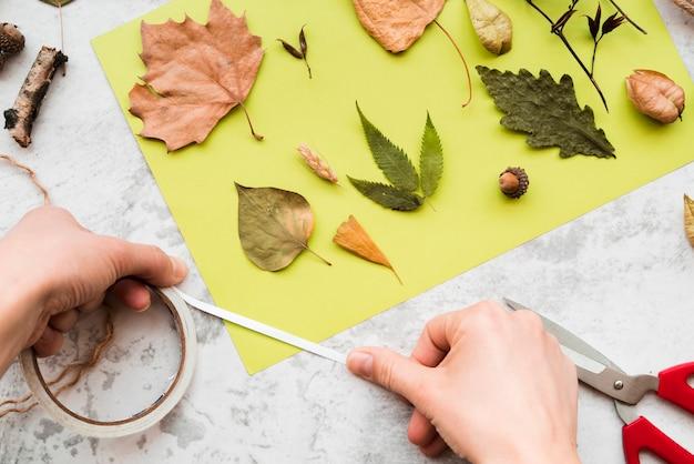 Primer plano de la mano de una persona decorando el libro verde con hojas de otoño