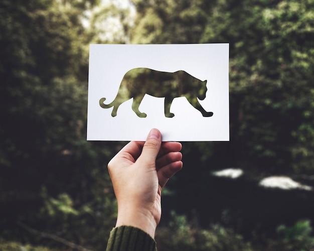 Primer plano de la mano que sostiene el papel perforado leopardo con fondo verde de la naturaleza