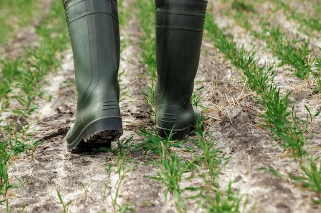 Primer plano de las manos del granjero, azada y campo en primavera