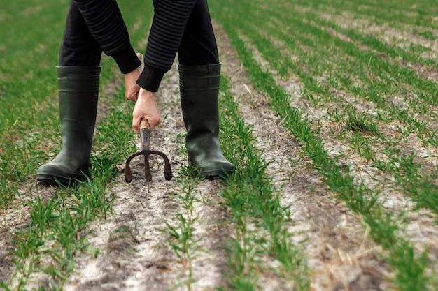 Primer plano de las manos del granjero