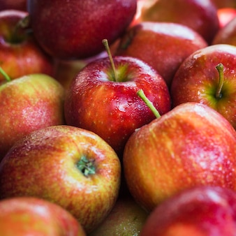 Primer plano de manzanas orgánicas maduras rojas
